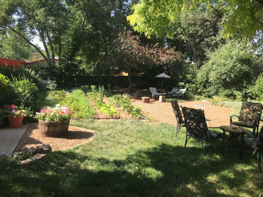 Back yard with organic vegetable garden