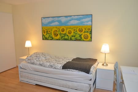 Beautiful studio close to the city of Basel (1350) - Bottmingen - Квартира