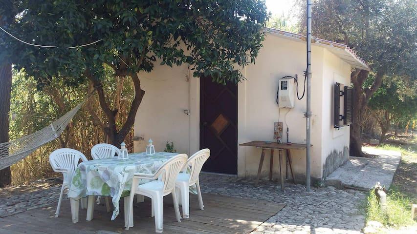 Nestor's cottage