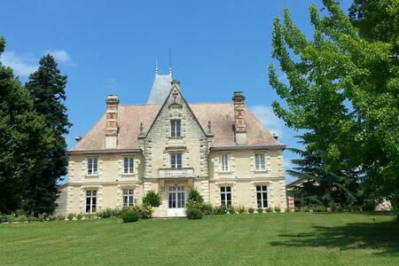 Château,piscine,tennis,10 personnes - Baleyssagues - Castle