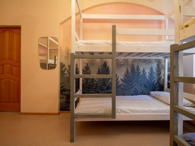 Bunk bed in male room. Apart-hotel  Hostel Pines