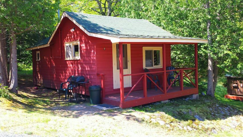 Ladybug Hut at Limberlost
