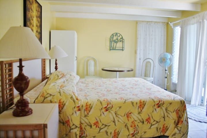 Affordable Private Room & Bath w/ King Size Bed
