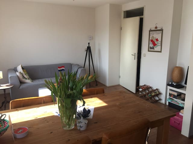 Apartment near Amsterdam, beach and Keukenhof