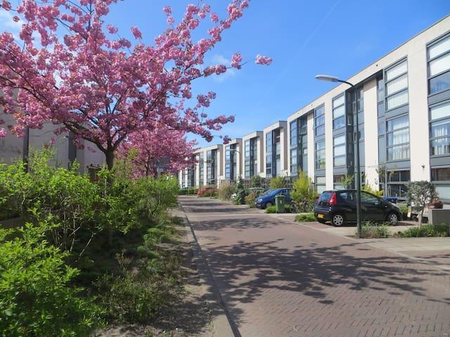 Vlakbij strand, bos en stad - Den Haag - House