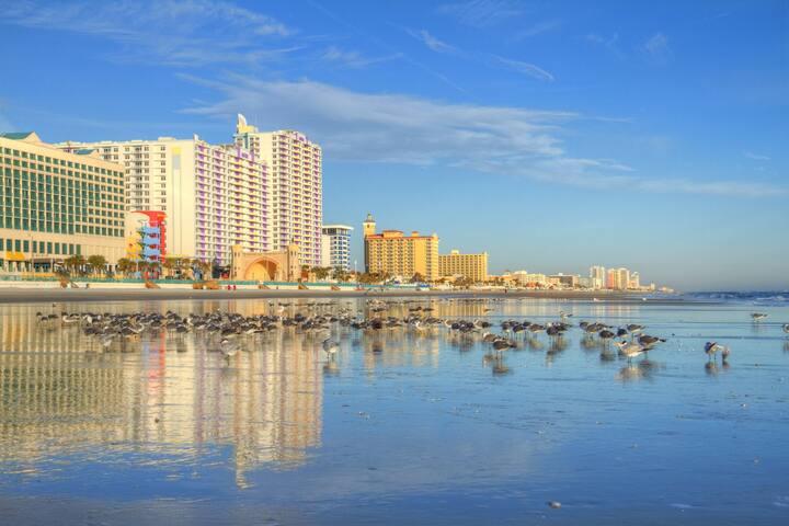 Ocean Walk, Daytona Beach, FL, 1 Bedroom Z #1