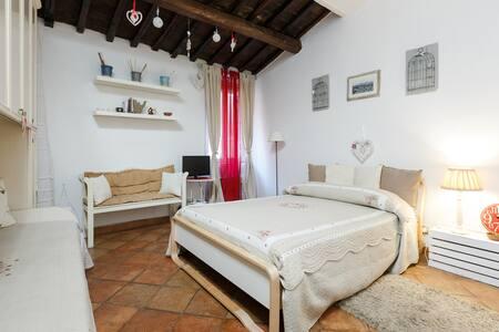 Roma cozy studio in Trastevere