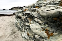 Inspirational formations of puddingstone are found throughout our area. This is from one of our favorite beaches, Second Beach in Middletown, RI.