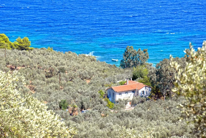 Private paradise by the sea - Glifa - Villa