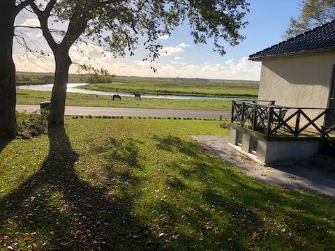 View over Skjern River