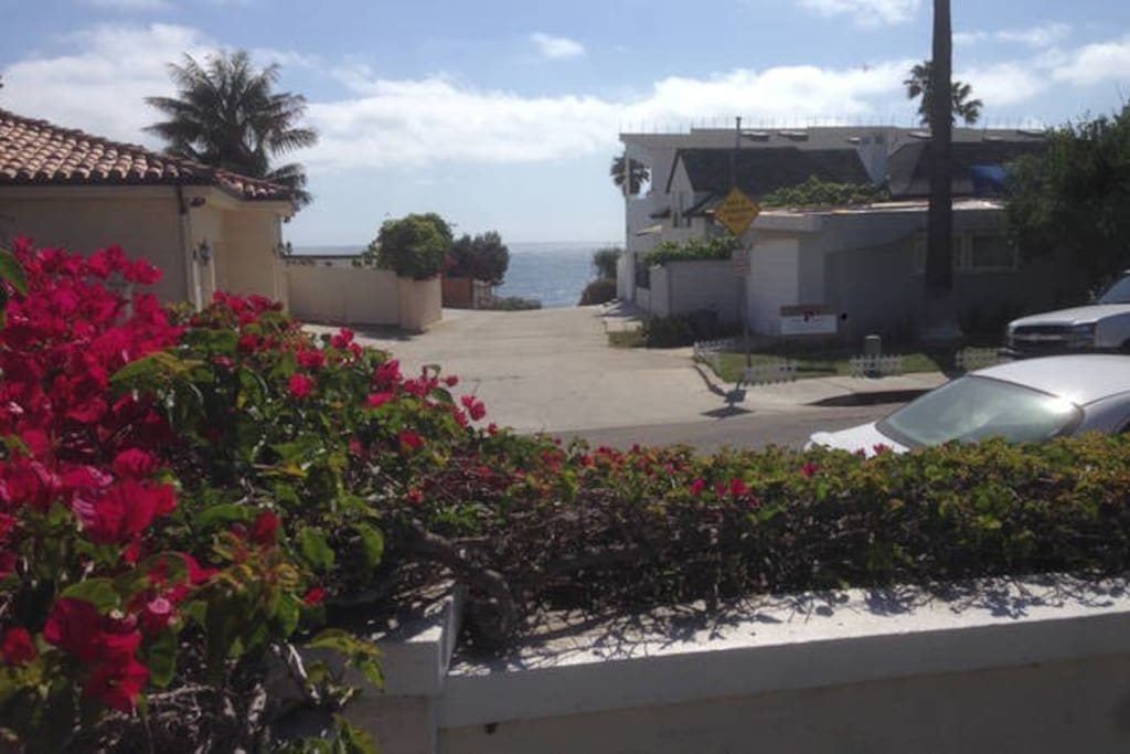 My favorite view from studio and main house to ocean; short walk to a beach