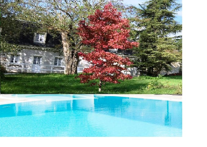 Bautiful Duplex with exceptional view. - Azay-le-Rideau - Byt