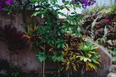 The Palmwood (Upper Suite) - Kilauea - Bed & Breakfast
