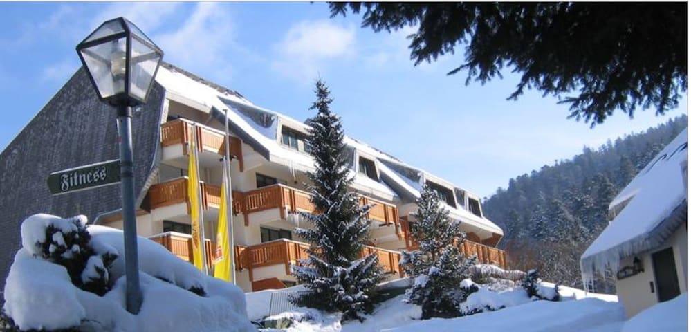 Romantisch Schwarzwald - Todtmoos - Apartment