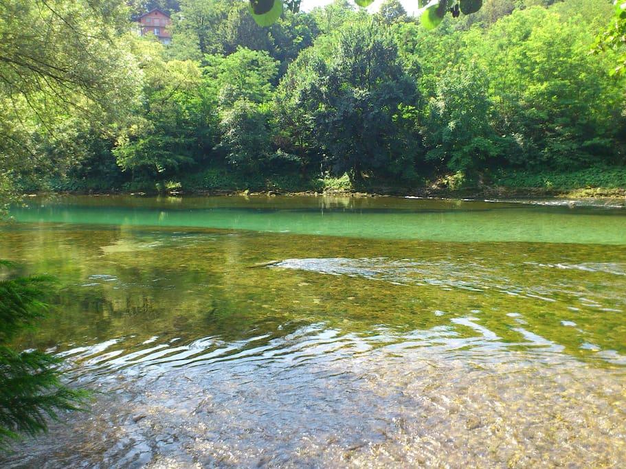 Beautiful Vrbas river in June