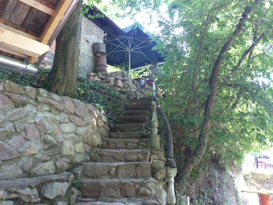 Stairway from river to cabin
