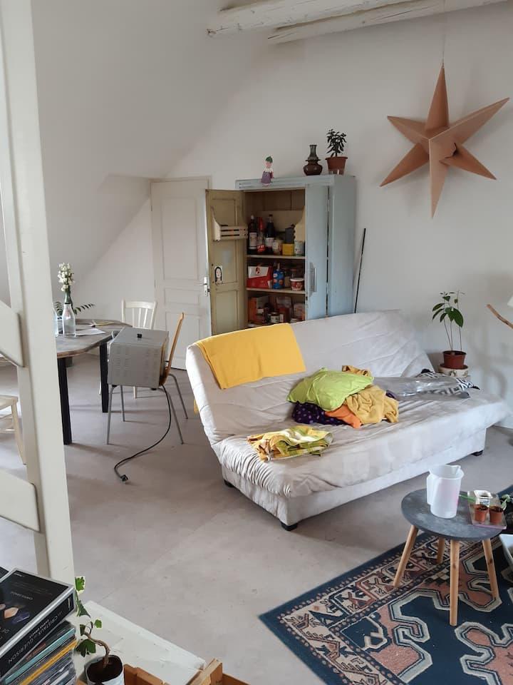 Chambre dans un appartement à Besançon