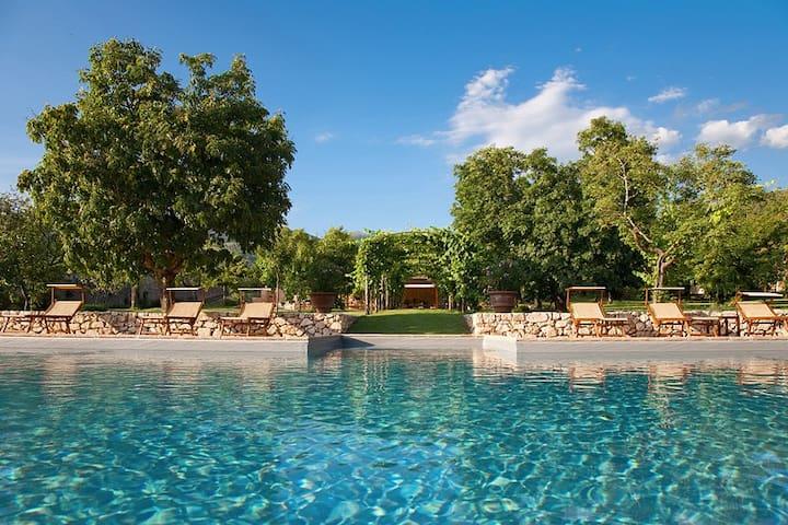La piscina e la pergola di vite che porta la ristorante