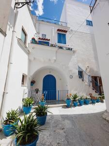 Janela Blue • Historic House • Civico 35