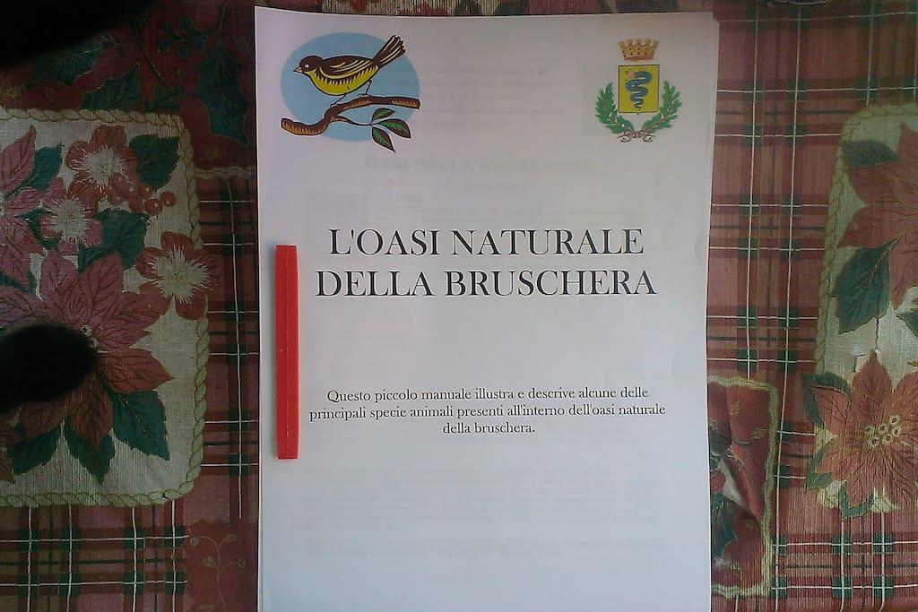 Vi piace passeggiare immersi nella natura? questo manuale è a vostra disposizione ed elenca le principali specie presenti nella vicina Oasi naturale.