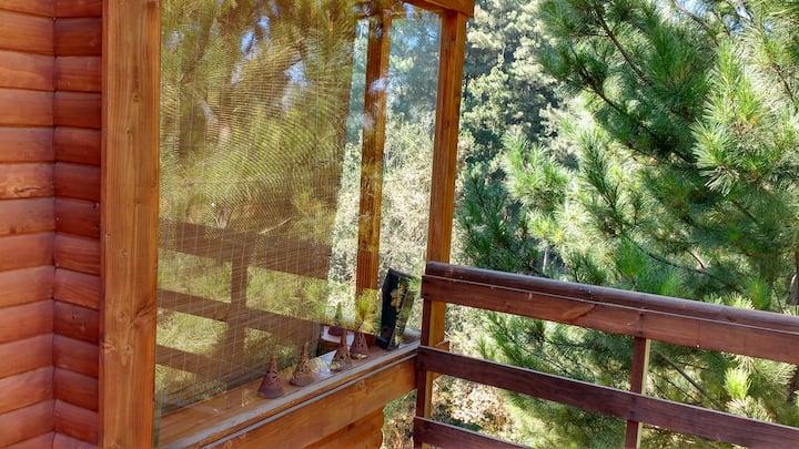cbñas insertas Bosque vista  lago (pinchar cbña 2