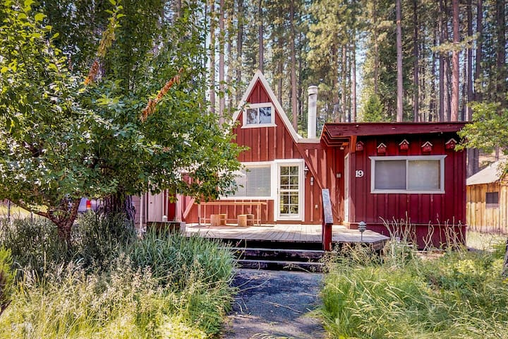 NEW LISTING! Peaceful mountain cabin - near golf, hiking trails