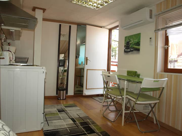 "Apartment - "" Studio Green """