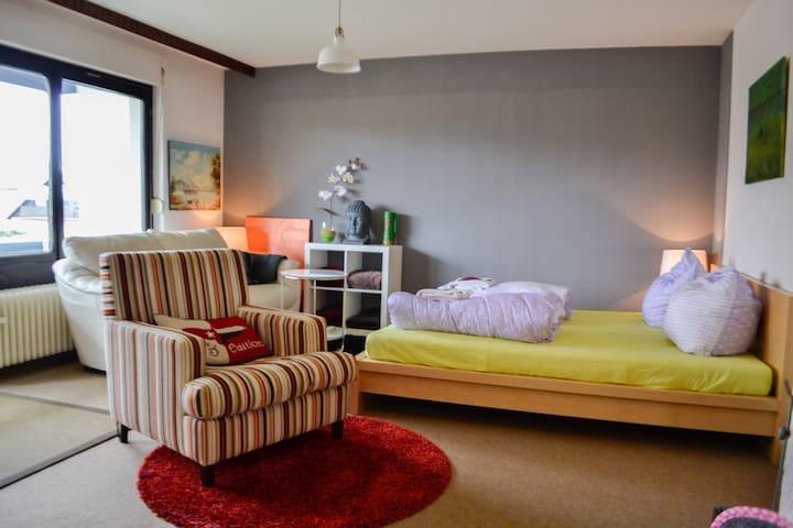 Wohlfühloase im Südharz  + Internet - Bad Sachsa - Apartment