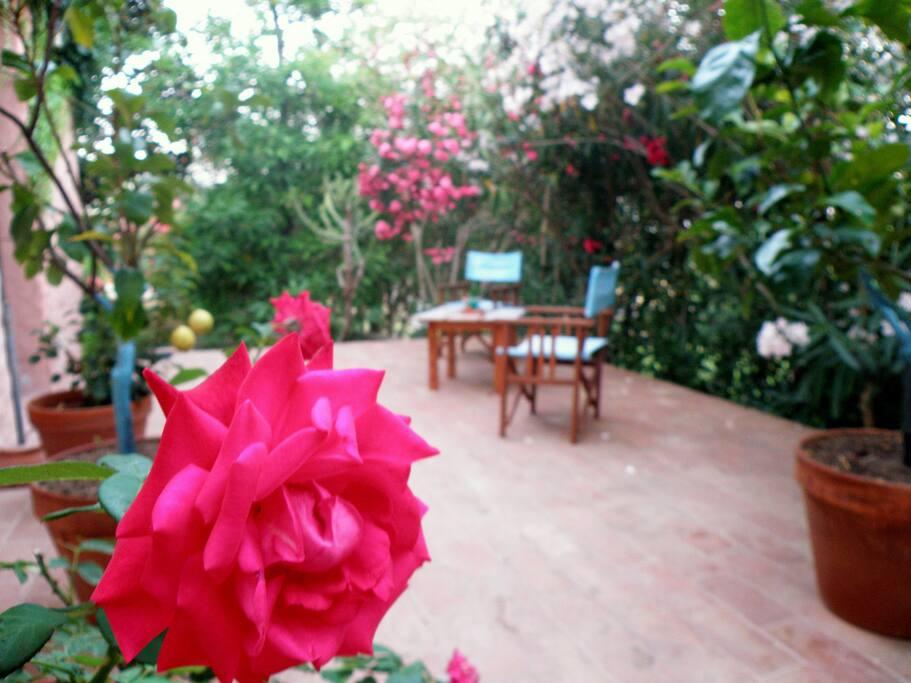 Veranda per ospiti/ Terrace for our guests