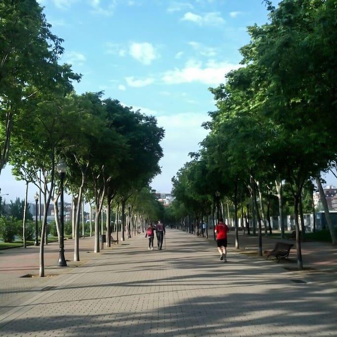Foto von Parc de Can Dragó