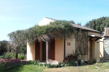 Stanza matrimoniale in casa rustica - Bassacutena
