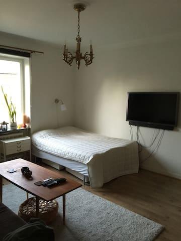 Studio Apt with Kitchen and balcony