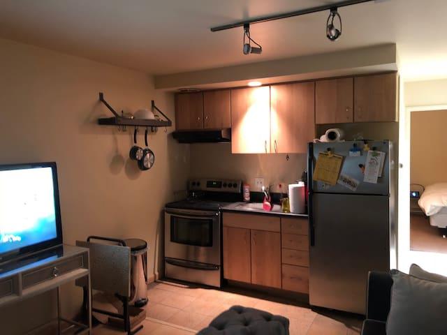 Ann Arbor Condominium