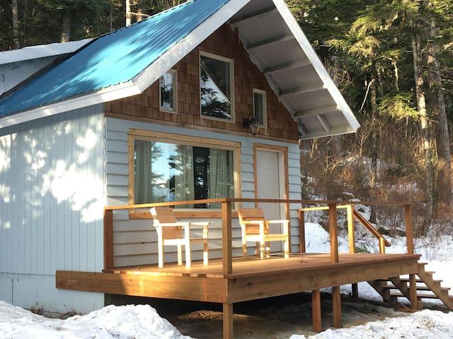 Family Cabin 2