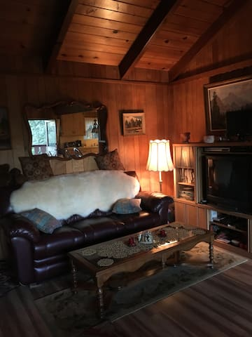 Retreat Cabin for R&R, fireplace, AC, hiking, view