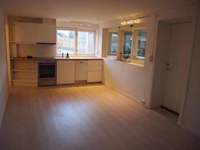 RØA, studio leies ut - Oslo - Apartamento