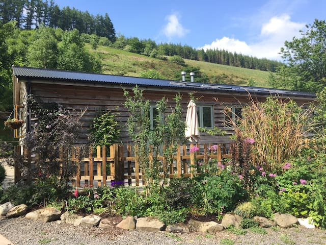 Peaceful forest stay at Cwmbiga Cottages