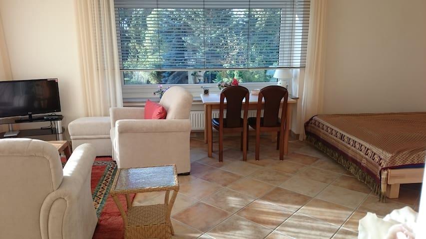 Lichtdurchflutetes komfortables Zimmer nahe Rhein - Bonn - Wohnung