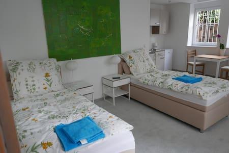 Zentral und trotzdem ruhig gelegenes Appartment - Oberursel (Taunus) - Apartmen