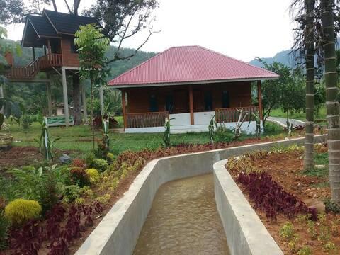 CIFA GARDEN HOUSE