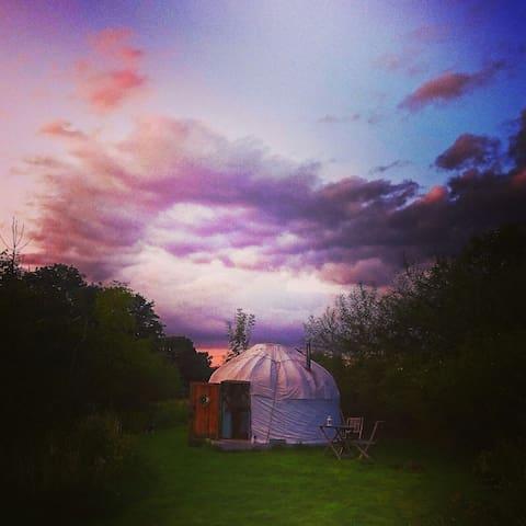 "Beautiful Yurt in Dorset ""Rose"" sleeping 2+Cot"