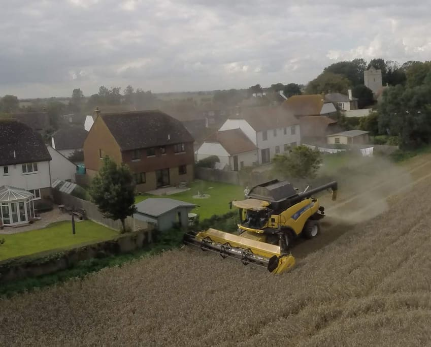 The house from above, during the harvest.