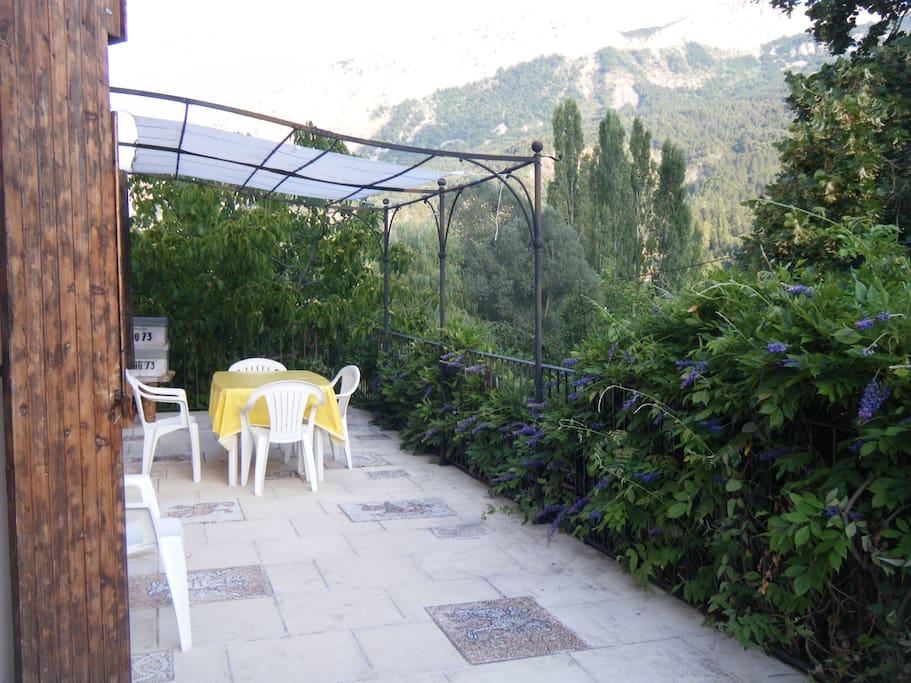 Terrasse et glycine