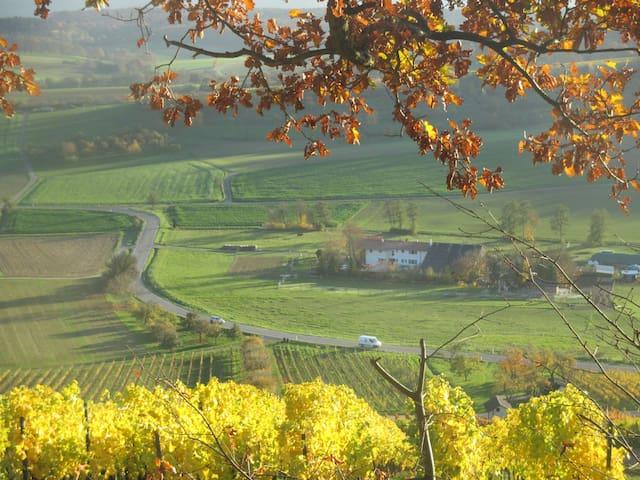 Rosbachhof zwischen Wälder und Weinbergen