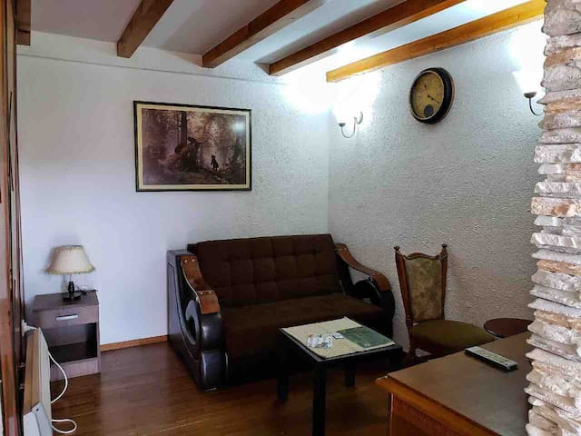 "Apartment ""Vila Vjera"" - studio"
