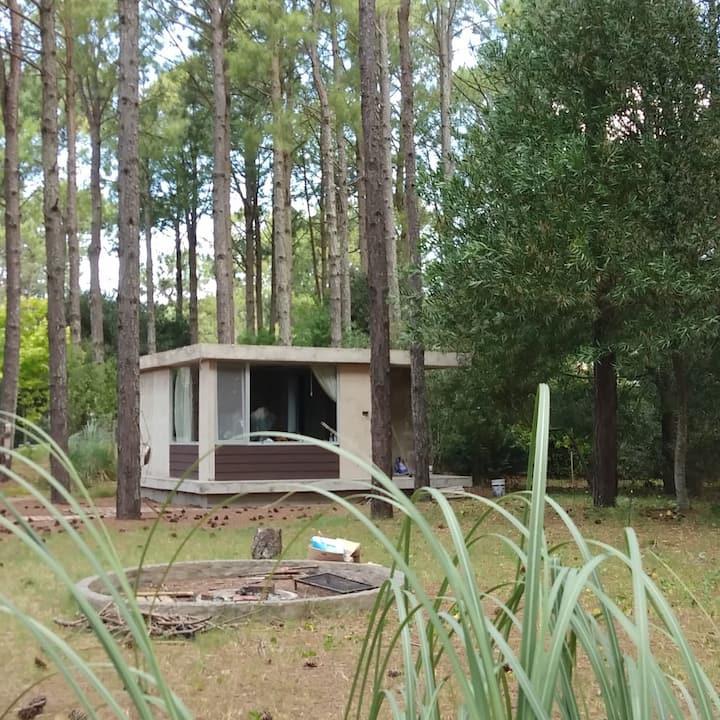 Espectacular Casa en el Bosque en Pinamar Norte