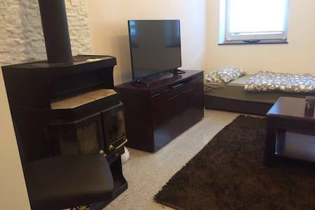 Gemütliche Einzimmerwohnung - Nürnberg - Apartmen