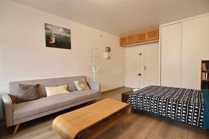 Living Room: The 15 square meters living room has a double glazed window facing courtyard . It is equipped with : sofa, double bed (1.40m), coffee table, TV, built-in shelves, built-in wall closet, chest of drawers, hard wood floor.
