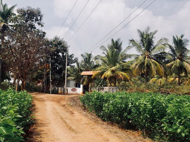 Village-style thotti-mane ( Adith Farm House)