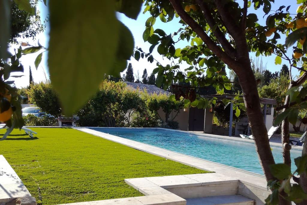 Vue depuis le Sud Est du jardin de l'espace piscine